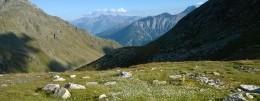 Visita Val Camonica - Ponte di Legno, Temù e Valle d'Aosta - Gran San Bernardo con PRO DOMO IMPRESA SOCIALE Sas