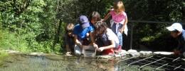 Visita i patrimoni naturali e culturali del Parco Monte Barro con Eliante
