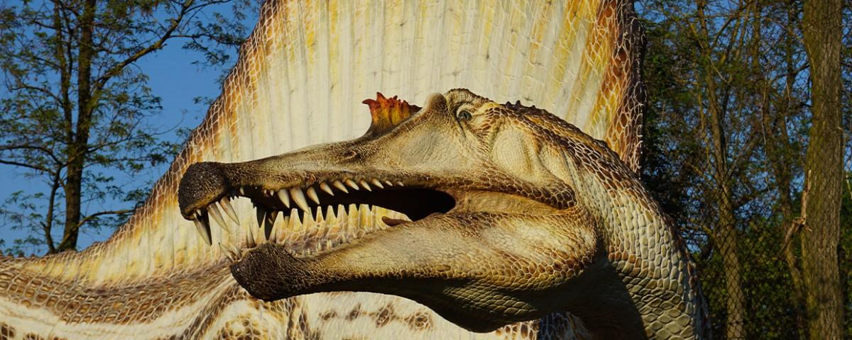 Visita le mostre Dinosauri in Carne e Ossa - Geomodel