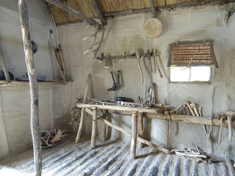 Gita scolastica al Parco archeologico e Museo all'aperto della Terramara di Montale - Modena