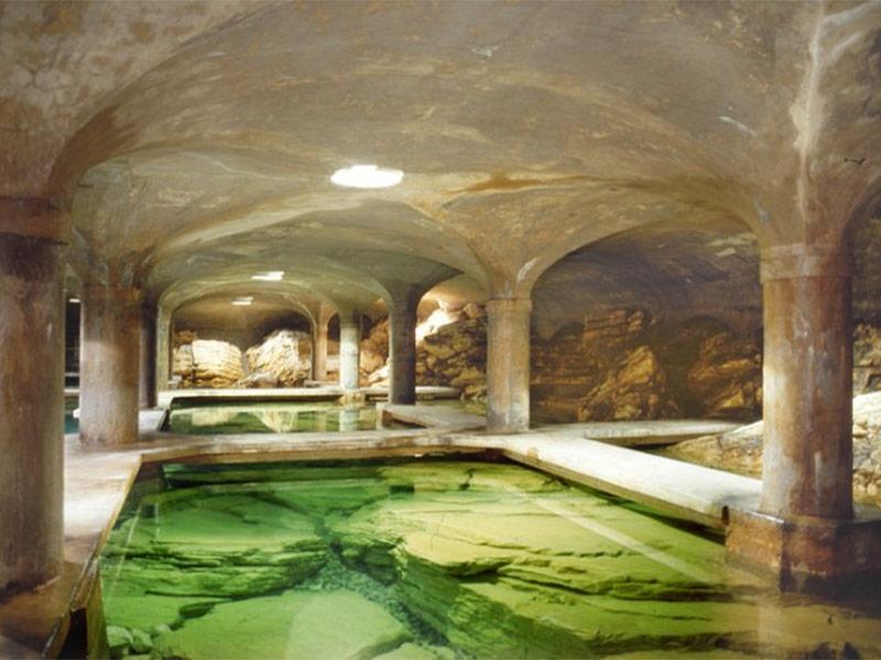 Visita Ambienteparco - Parco Scientifico a Brescia