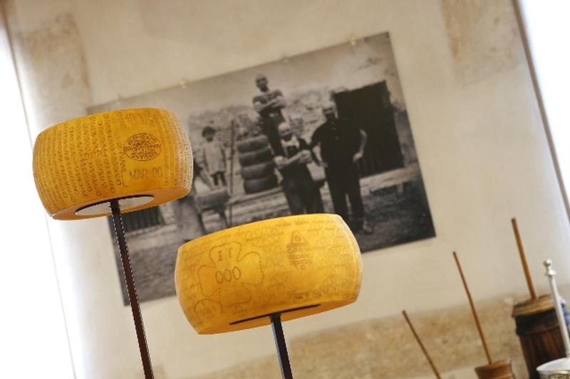 Visita il Museo Civico Polironiano