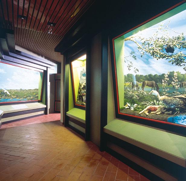 Visita il Museo Sa Corona Arrubia