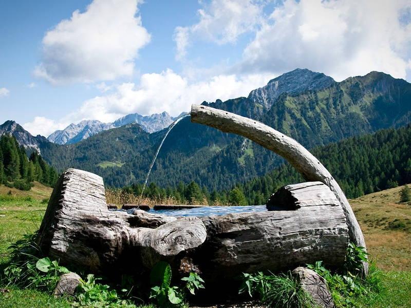Visita il Parco Naturale delle Dolomiti Friulane