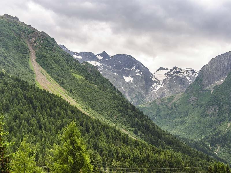 Visita Val Camonica - Ponte di Legno e Temù con PRO DOMO IMPRESA SOCIALE Sas