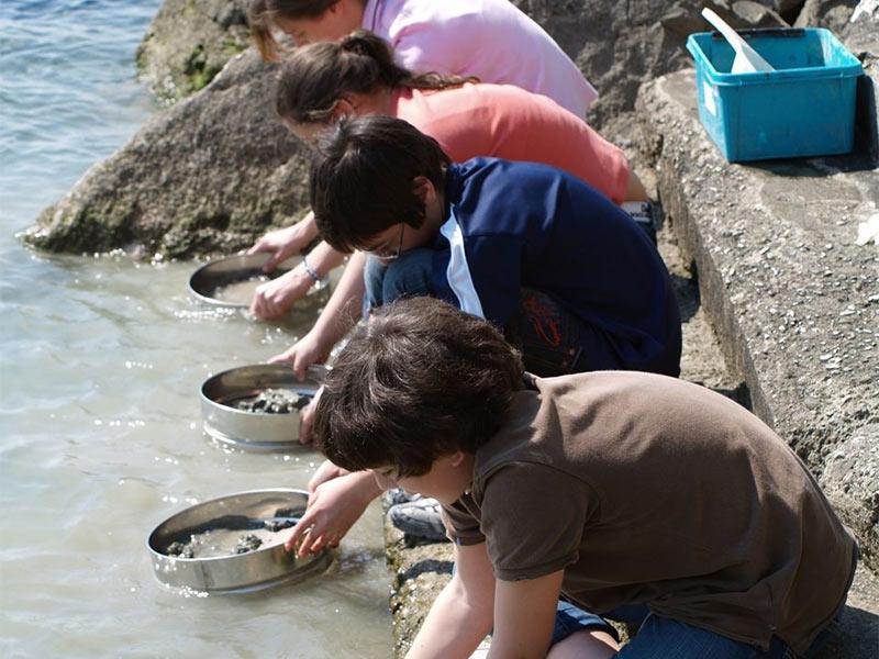 Organizza la tua gita scolastica con WWF Area Marina Protetta di Miramare